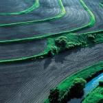 Responsabilidade Ambiental e Cuidado com o meio ambiente